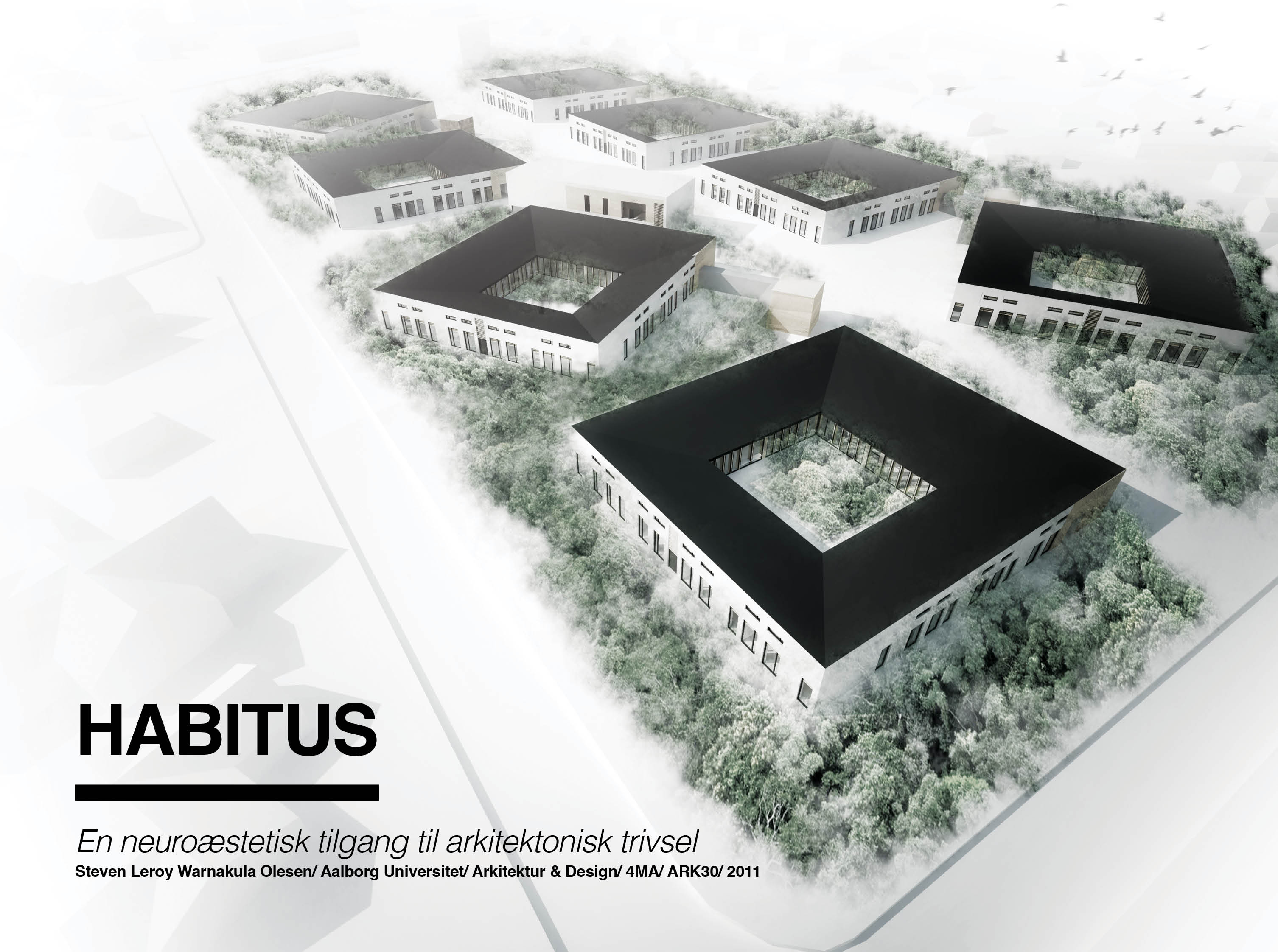 Architecture Design Thesis habitus - project library, aalborg university